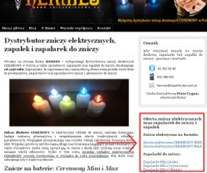 Screen strony głównej zniczediodowe.pl